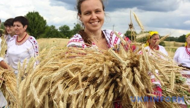 На Житомирщині під час етнофестивалю жатимуть серпами жито