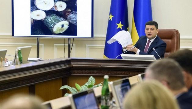 Гройсман запитає в ЄС, який український ліс завозили на їхню територію