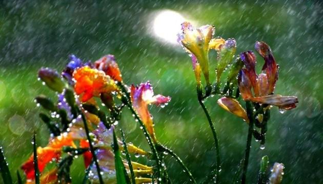 Синоптики прогнозируют грозы и жару до 34°
