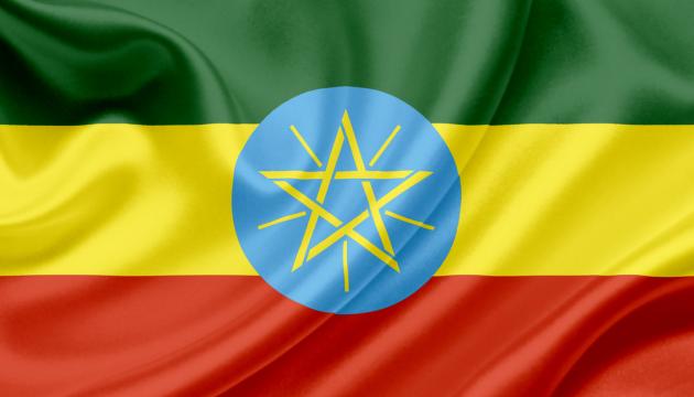Українська курятина продаватиметься в Ефіопії