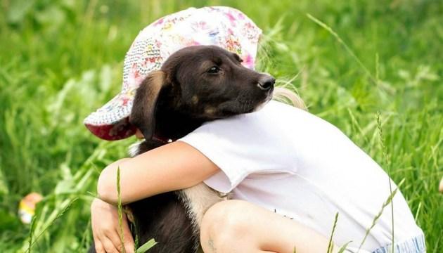 Супрун опровергает мифы: домашние животные