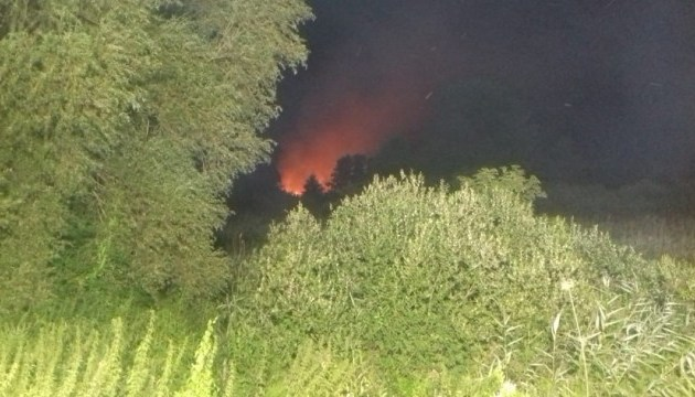 На Ривненщине выгорел остров-ботанический памятник природы