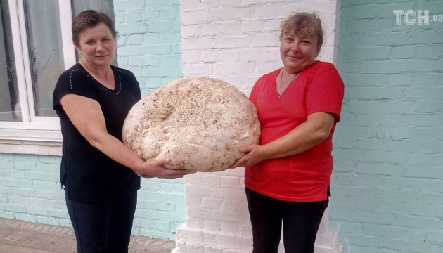 Huge mushroom weighing almost 18 kg found in Kyiv region (photos)