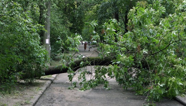 Ukraine's Emergency Service: 118 towns and villages still without electricity due to bad weather