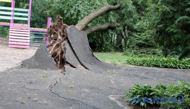 Bad weather leaves over 600 towns and villages in Ukraine without electricity