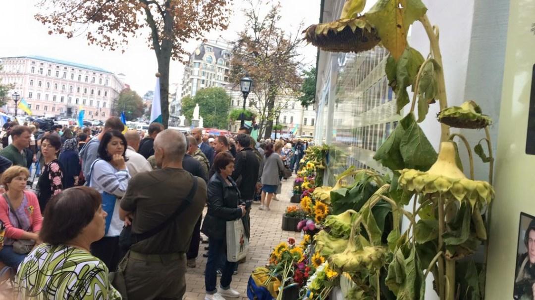 Соняхи біля Стіни пам'яті на Михайлівській площі у Києві.