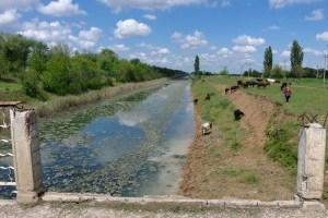 На Херсонщині авто впало у канал, загинули двоє дітей і дорослий