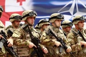 У Грузії планують заборонити прийом на держслужбу чоловіків, які не служили в армії