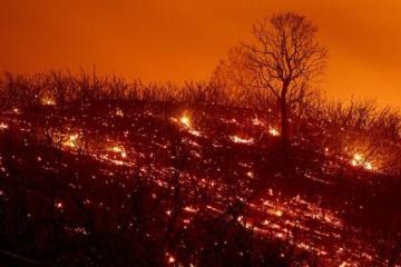 Extreme fire hazard level remains in Ukraine
