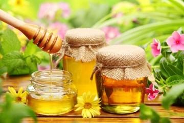 Ukraine's honey exports grew by 38% in 2017 - Kubiv