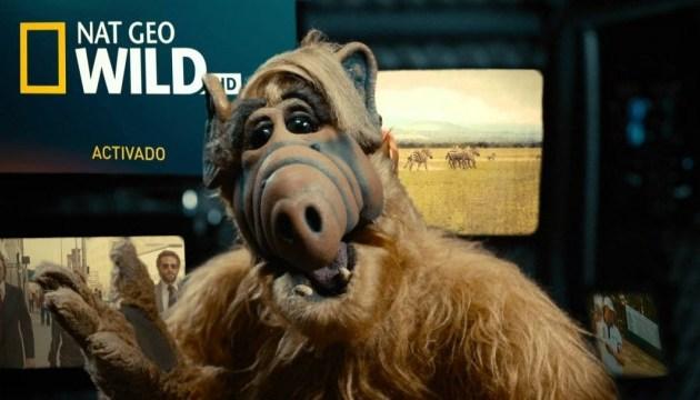 Студія Warner Bros. перезапускає серіал «Альф»
