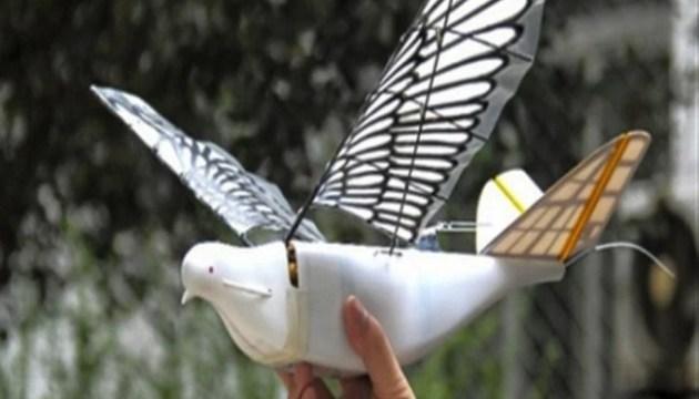 У Китаї створили дрона-голуба