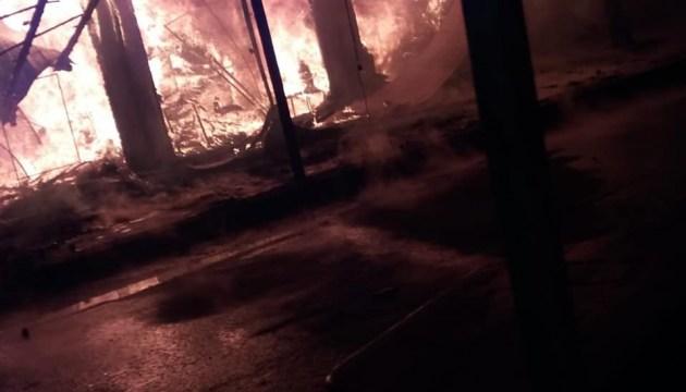 На Миколаївщині знову пожежа у курортній зоні