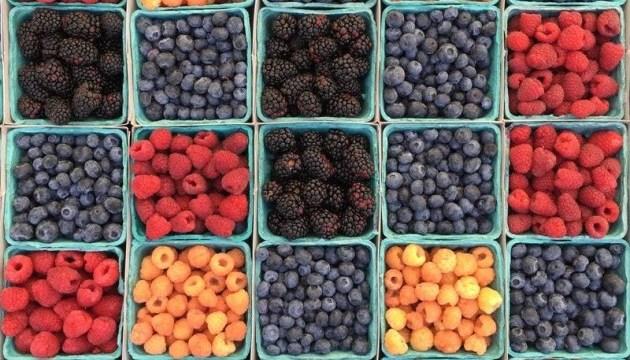 Экспорт украинских ягод и орехов в этом году вырос на 61,5% - МЭРТ