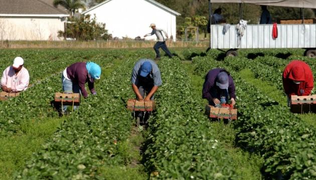 Les Ukrainiens représentent 75% des travailleurs migrants qui travaillent en Pologne