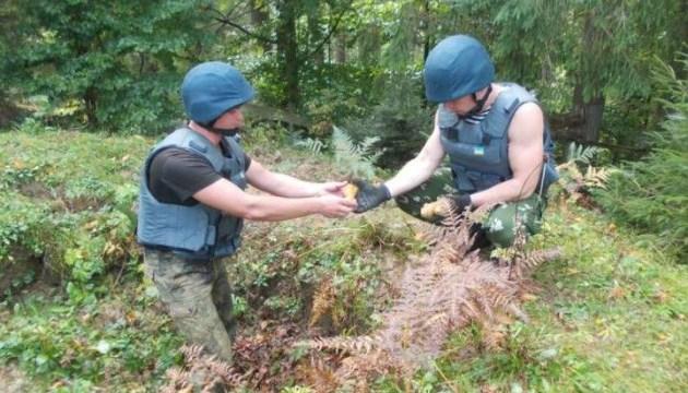 На Лисій горі знайшли 30 мін часів Другої світової
