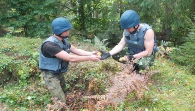 На Лисій горі знайшли понад півсотні протитанкових мін