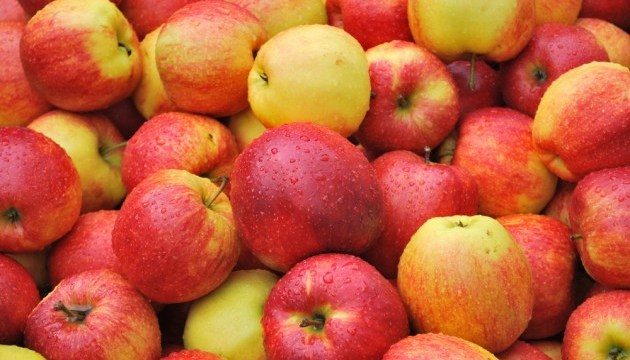 Manzanas ucranianas se exportan principalmente a Belarús, Moldavia y Austria