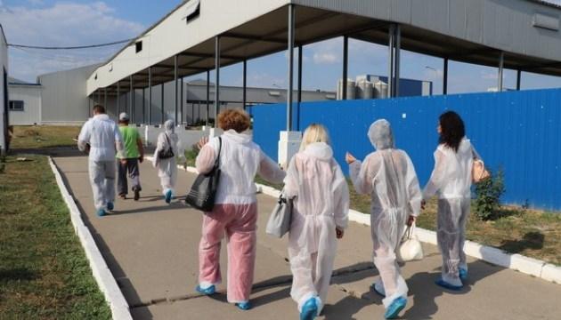 Сморід у Херсоні: інспекція розпочала перевірку птахофабрики
