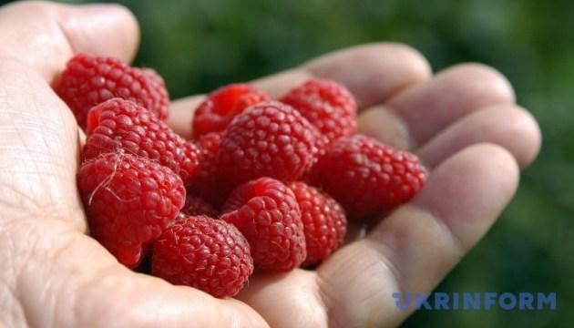 На Тернопільщині ділилися досвідом створення сільгоспкооперативів