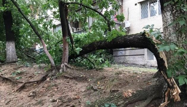 Повалені дерева та зірвані дахи: ДСНС ліквідовує наслідки негоди у Києві