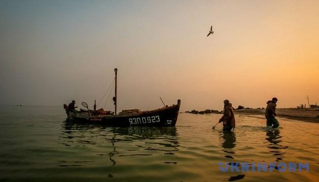 Україна і Росія узгодили квоти на вилов риби в Азовському морі