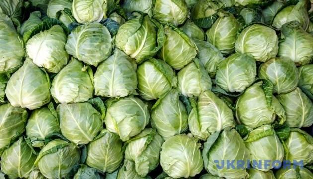 Эксперты объяснили значительный рост цены капусты с начала года