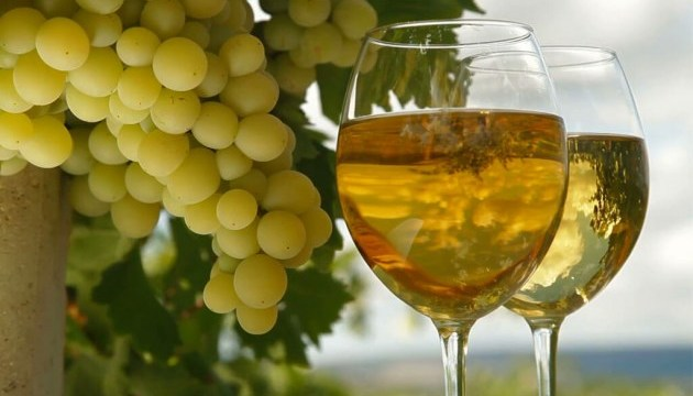 Wine and grape festival to be held in Lviv on September 1-2