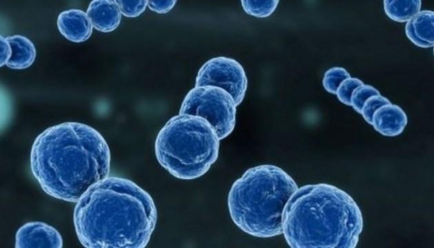Супрун радить, як вберегтися від небезпечних бактерій