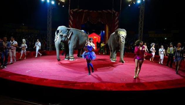 В Виннице запретили цирки-шапито с животными