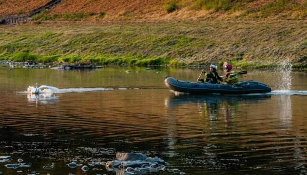 В Ужгороде спасли лебедя