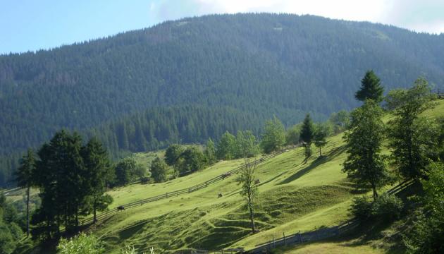 Путешествие по пейзажами: на Закарпатье презентовали уникальный культурный маршрут