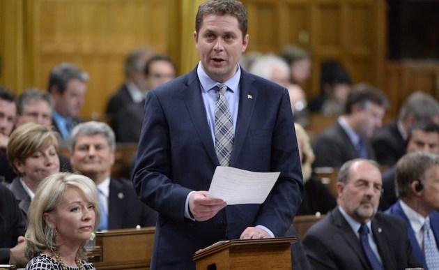 Ендрю Шир / Фото: The Canadian Press