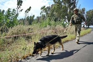 Zuspitzung im Donbass: Besatzer feuern mit Artillerie und schließen Hunderte von Minen ab