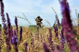 Im Donbass kommen Granatwerfer und Maschinengewehre zum Einsatz, zwei Soldaten verwundet