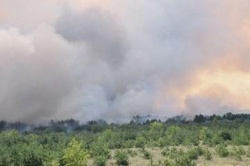 Extreme fire hazard level remains in most regions of Ukraine