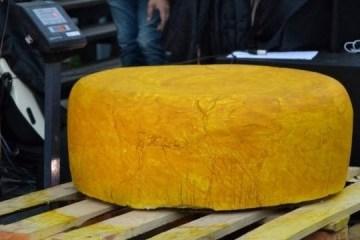 切尔诺夫策制作乌克兰最大奶酪