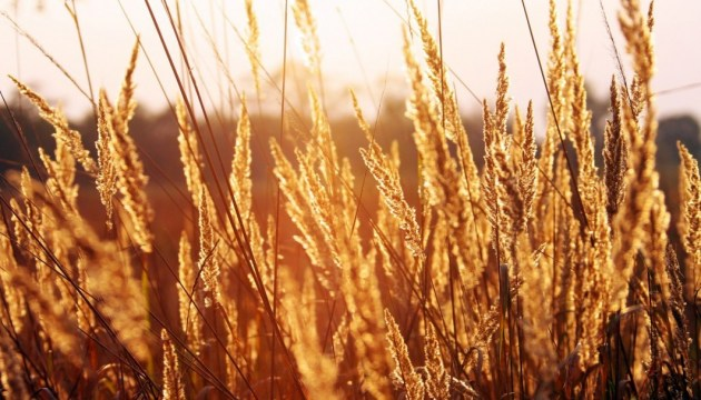 Осінь не поспішає в Україну: синоптики розповіли, якої погоди чекати наступного тижня