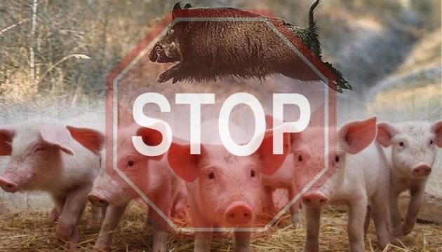 На півдні Молдови - нові вогнища африканської чуми свиней