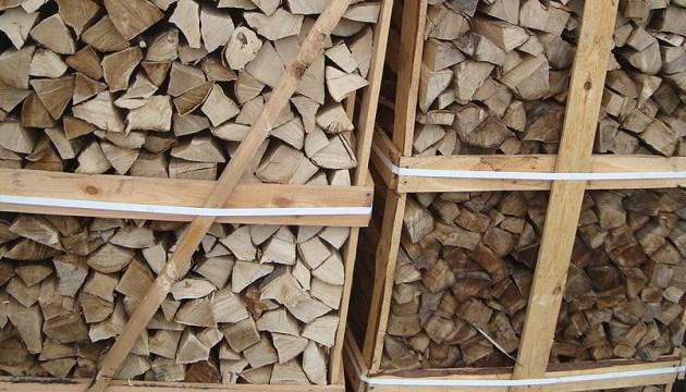 Москаль предлагает запретить продажу дров за границу