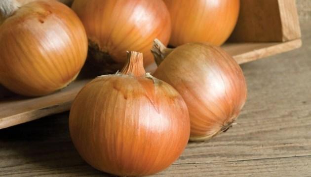 Ukrainian yellow onion exports grow 17-fold
