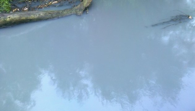 Загрязнение речки на Буковине: соки не виноваты?