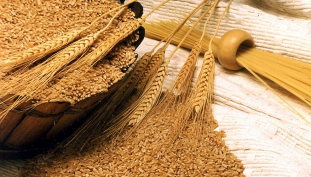 Ukraine's grain exports amount to 40 mln tonnes