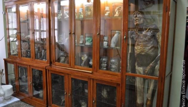 Франковский музей анатомии устроит открытые экскурсии