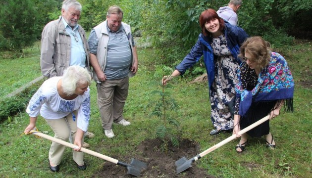 'Tree of friendship' with American town of Irondequoit planted in Poltava