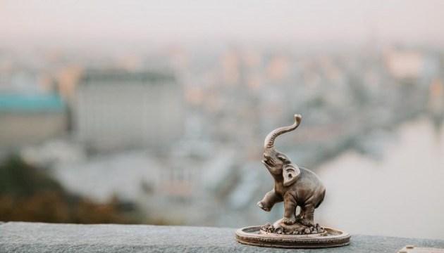 У центрі Києва з'явився маленький слон