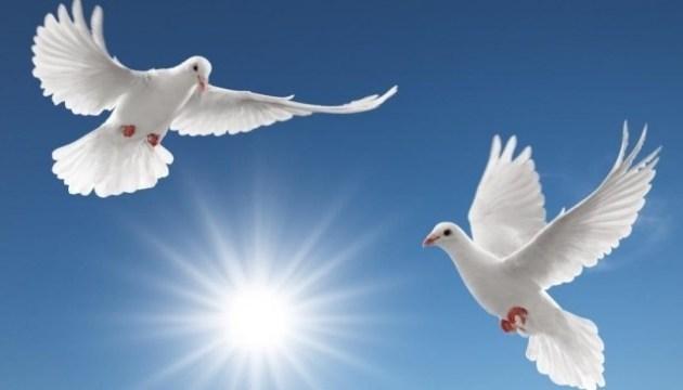 El mundo celebra hoy el Día Internacional de la Paz