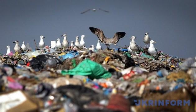 Украинцы создали приложение, которое помогает сортировать мусор