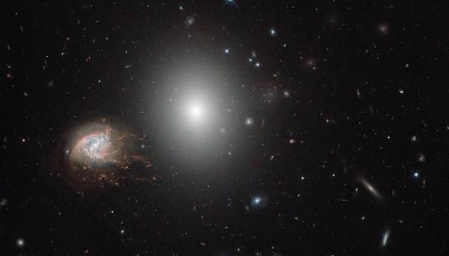 Hubble показав скупчення галактик у сузір'ї Волосся Вероніки