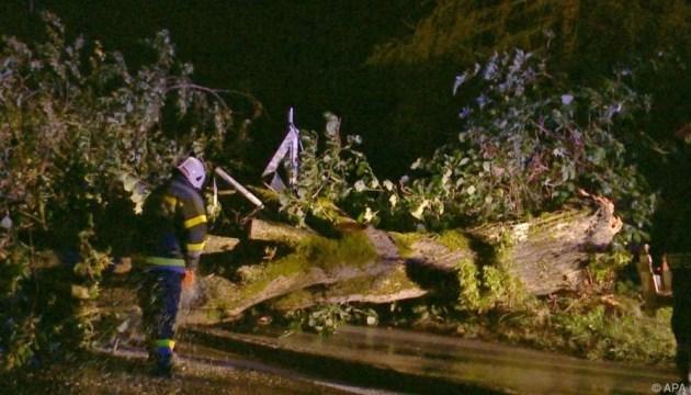 Циклон Фабьен в Австрии ночью валил деревья и разрушал постройки